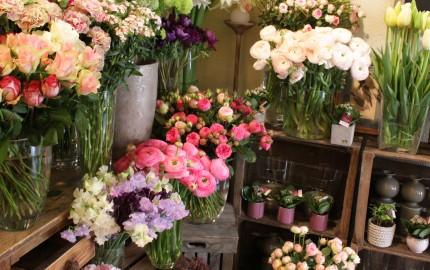 fleurs beaune art vegetal